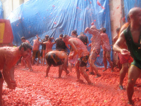tomatina-2008