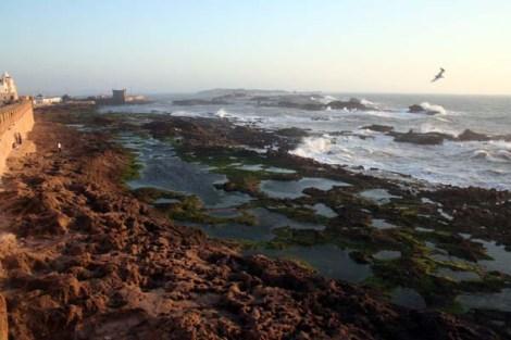 Essaouira25