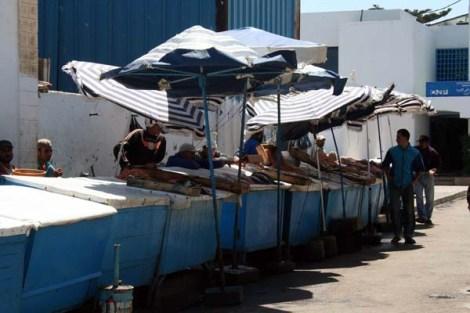 Essaouira44